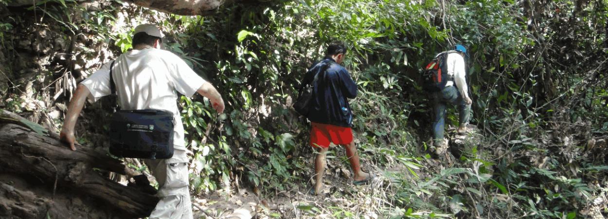 Laos, Trekking, Nature, Treks, Luang Namtha, Luang Prabang, Activities, Laos, Tourism