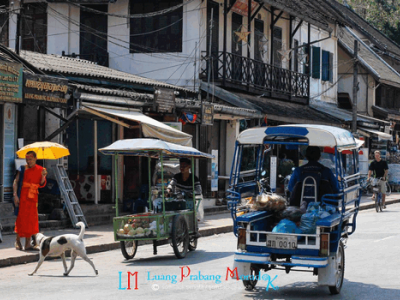 Jump on a sawng taews and Buses travel between Houay Xai Bus station and other districts